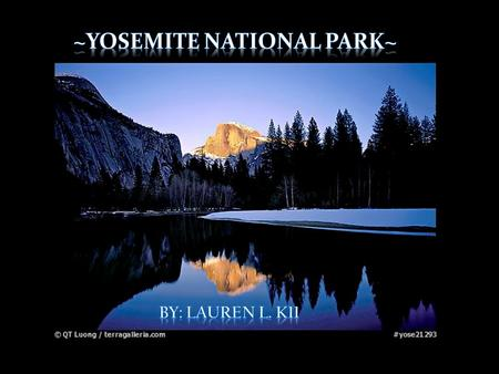 Yosemite National Park is located in California. Around 195 miles away from San Francisco. 761,266 acres is home to many wildlife species and Yosemite.