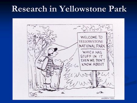 Research in Yellowstone Park. Stacey Gunther Overview Each year… The Research Permit Office issues ~200 research permits The Research Permit Office issues.