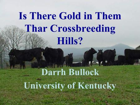 Is There Gold in Them Thar Crossbreeding Hills? Darrh Bullock University of Kentucky.