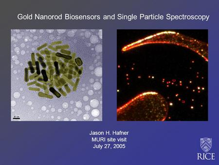 Gold Nanorod Biosensors and Single Particle Spectroscopy Jason H. Hafner MURI site visit July 27, 2005.