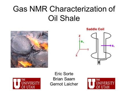 Gas NMR Characterization of Oil Shale