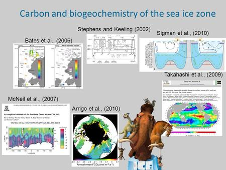 Carbon and biogeochemistry of the sea ice zone Bates et al., (2006) Stephens and Keeling (2002) Sigman et al., (2010) Takahashi et al., (2009) Arrigo et.