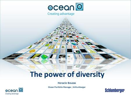 Horacio Bouzas Ocean Portfolio Manager, Schlumberger The power of diversity.