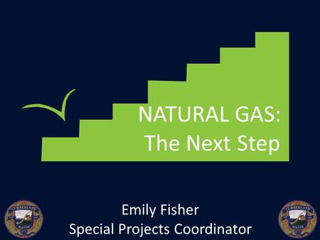 NATURAL GAS: The Next Step Emily Fisher Special Projects Coordinator.