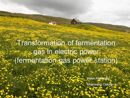 Transformation of fermentation gas in electric power (fermentation gas power station) Matei Alexandru Mosneang Claudiu.