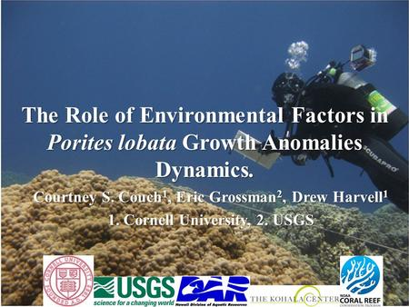 The Role of Environmental Factors in Porites lobata Growth Anomalies Dynamics. Courtney S. Couch 1, Eric Grossman 2, Drew Harvell 1 1. Cornell University,