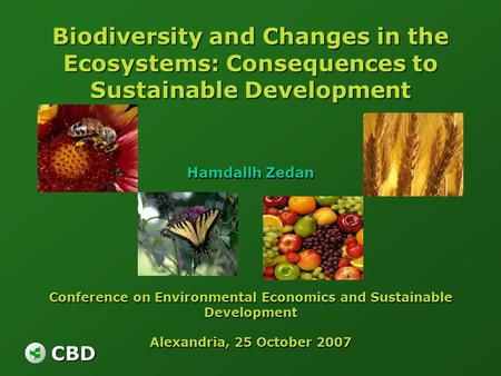 Biodiversity <strong>and</strong> Changes in the Ecosystems: Consequences to Sustainable Development Hamdallh Zedan Conference on Environmental Economics <strong>and</strong> Sustainable.