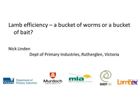 Lamb efficiency – a bucket of worms or a bucket of bait? Nick Linden Dept of Primary Industries, Rutherglen, Victoria.