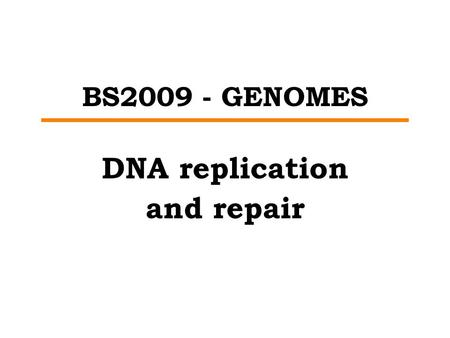 BS2009 - GENOMES DNA replication and repair. REPLICATION – GENERAL PRINCIPLES START Must be ready Must know where to start FINISH Must all finish Must.