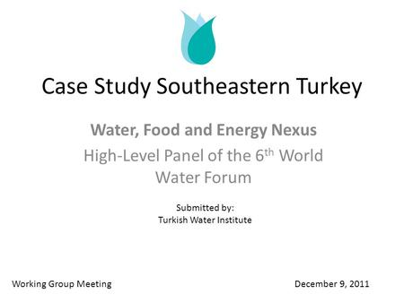 Case Study Southeastern Turkey Water, Food and Energy Nexus High-Level Panel of the 6 th World Water Forum Working Group Meeting December 9, 2011 Submitted.
