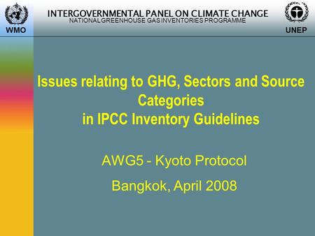 INTERGOVERNMENTAL PANEL ON CLIMATE CHANGE NATIONAL GREENHOUSE GAS INVENTORIES PROGRAMME WMO UNEP Issues relating to GHG, Sectors and Source Categories.