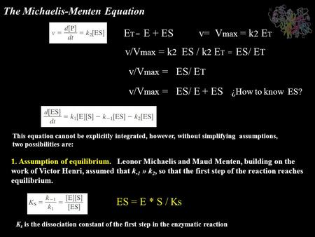 The Michaelis-Menten Equation