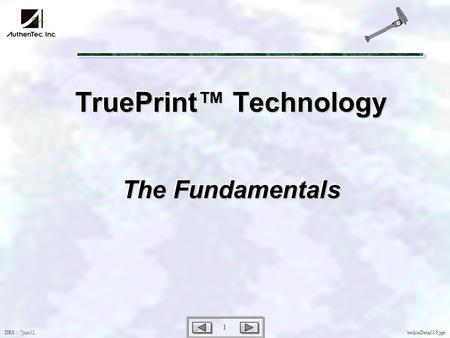 DRS \\ 7jun02 1 techieDetail16.ppt TruePrint Technology The Fundamentals.