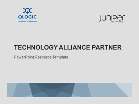 Technology alliance partner