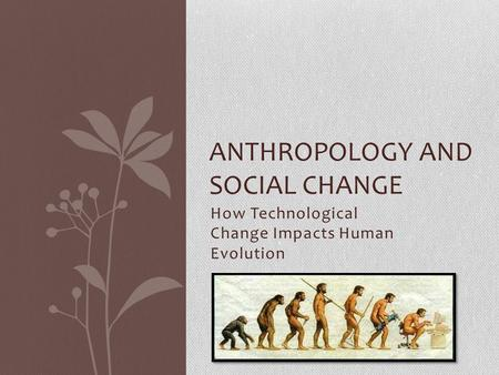 Anthropology and Social Change