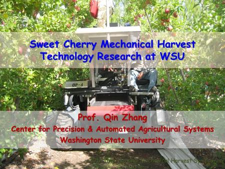 Sweet Cherry Mechanical Harvest Technology Research at WSU Prof. Qin Zhang Center for Precision & Automated Agricultural Systems Washington State University.