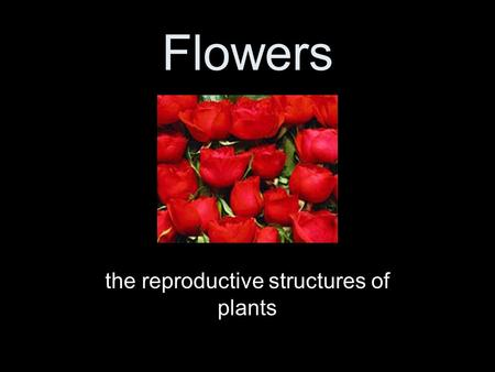 Flowers the reproductive structures of plants. 4 parts of a plant Roots Stems Leaves Reproductive (includes flowers and fruits)