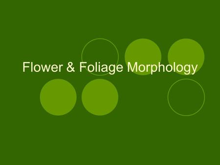 Flower & Foliage Morphology. Parts of the Flower.