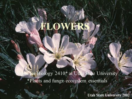 FLOWERS Notes for Biology 2410* at Utah State University *Plants and fungi: ecosystem essentials.
