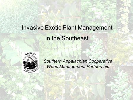 Invasive Exotic Plant Management in the Southeast Southern Appalachian Cooperative Weed Management Partnership.