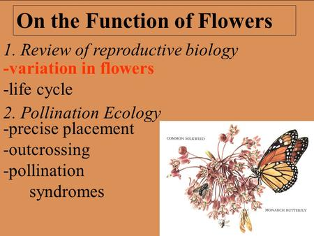 1. Review of reproductive biology 2. Pollination Ecology On the Function of Flowers -precise placement -outcrossing -pollination syndromes -variation in.