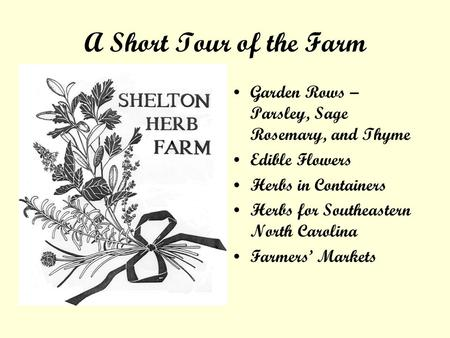 A Short Tour of the Farm Garden Rows – Parsley, Sage Rosemary, and Thyme Edible Flowers Herbs in Containers Herbs for Southeastern North Carolina Farmers.