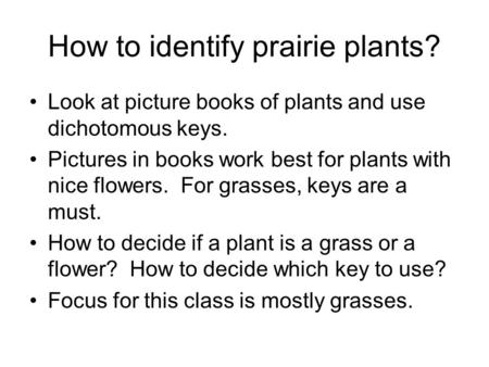 How to identify prairie plants?