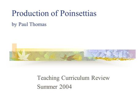 Production of Poinsettias by Paul Thomas Teaching Curriculum Review Summer 2004.