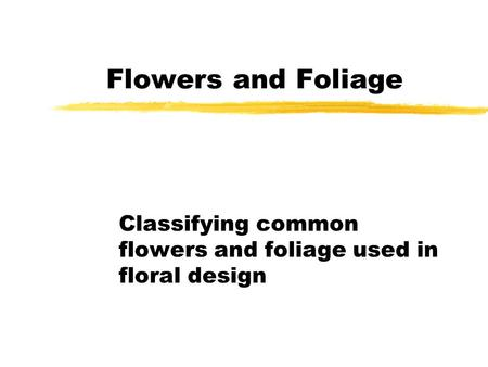 Flowers and Foliage Classifying common flowers and foliage used in floral design.