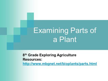 Examining Parts of a Plant 8 th Grade Exploring Agriculture Resources: