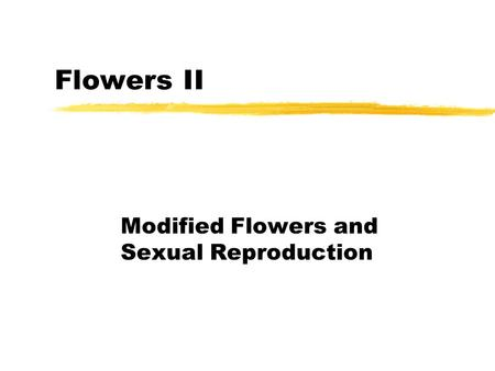 Modified Flowers and Sexual Reproduction