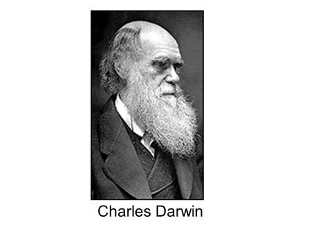 Charles Darwin. Darwinian Natural Selection 1.Individuals within populations are variable. 2.The variations among individuals are, at least in part, passed.
