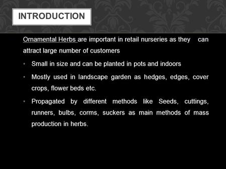 Ornamental Herbs are important in retail nurseries as they can attract large number of customers Small in size and can be planted in pots and indoors Mostly.