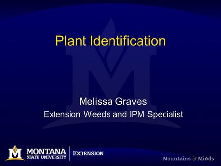 1 Plant Identification Melissa Graves Extension Weeds and IPM Specialist.