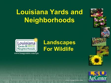 Louisiana Yards and Neighborhoods Landscapes For Wildlife www.lsuagcenter.com/lyn.