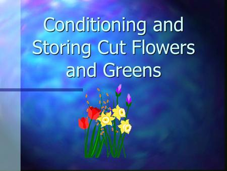 Conditioning and Storing Cut Flowers and Greens Long lasting flowers n important n pleases customer n happy customers return to the florist when they.