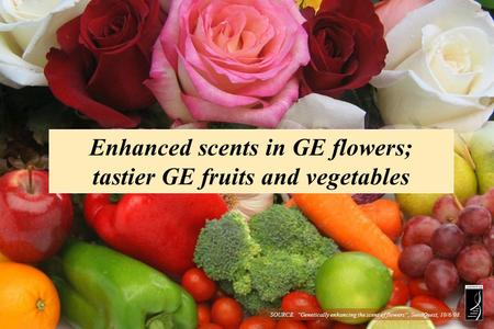 Enhanced scents in GE flowers; tastier GE fruits and vegetables SOURCE: Genetically enhancing the scent of flowers, SeedQuest, 10/6/08.