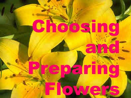 Choosing and Preparing Flowers. When to Buy Flowers For arrangements at home, buy flowers that are still in a bud For flowers for an occasion, like a.