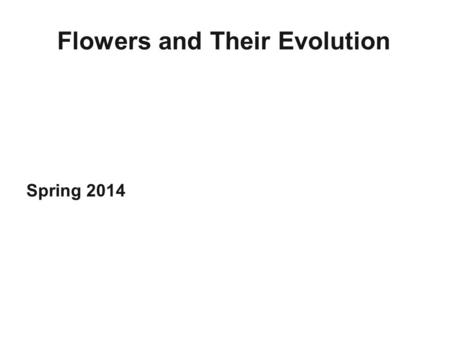 Flowers and Their Evolution Spring 2014. Flower = a short, determinate shoot bearing highly modified leaves, some of which are fertile (i.e., bearing.