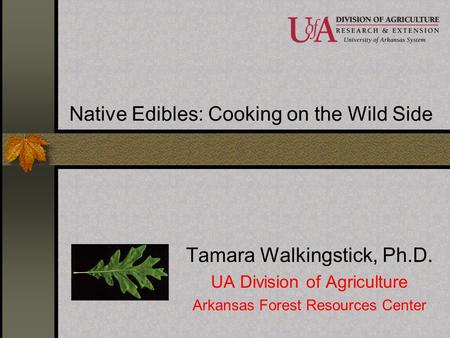 Native Edibles: Cooking on the Wild Side
