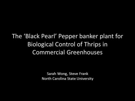 The Black Pearl Pepper banker plant for Biological Control of Thrips in Commercial Greenhouses Sarah Wong, Steve Frank North Carolina State University.