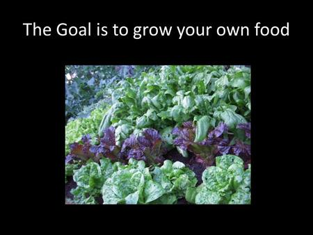 The Goal is to grow your own food. The Goal is to relax in the Garden.