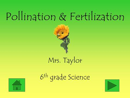 Pollination & Fertilization