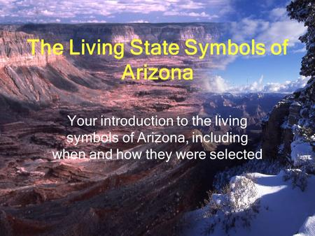The Living State Symbols of Arizona Your introduction to the living symbols of Arizona, including when and how they were selected.