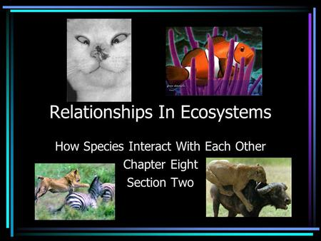 Relationships In Ecosystems How Species Interact With Each Other Chapter Eight Section Two.