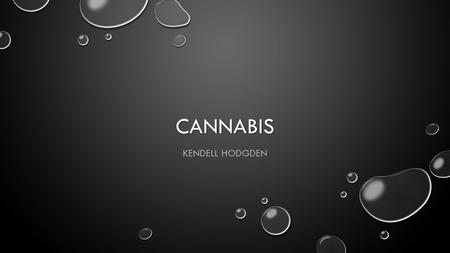 CANNABIS KENDELL HODGDEN. DEFINE/DESCRIBE IT IS MADE FROM THE DRIED FLOWERS AND LEAVES OF A PLANT CALLED CANNABIS SATIVA IT IS MADE FROM THE DRIED FLOWERS.