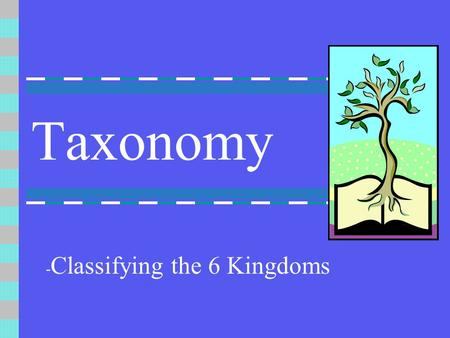 Taxonomy - Classifying the 6 Kingdoms. Kingdom This is the largest taxon. All organisms are placed in 1 of 6 groups based on their cell structure. A group.