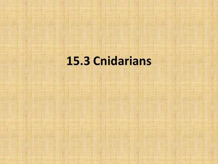 15.3 Cnidarians. Objectives Describe the characteristics of cnidarians. Explain how cnidarians reproduce. Compare and contrast the two body forms of cnidarians.