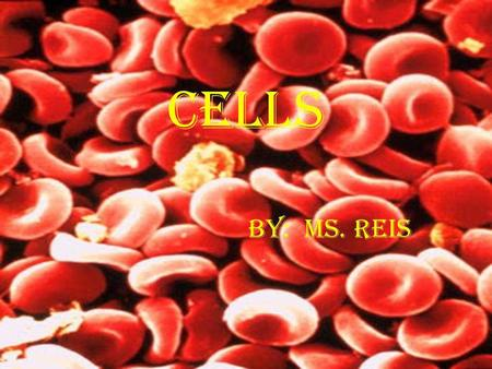 CELLS BY: MS. REIS.