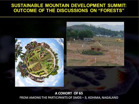 SUSTAINABLE MOUNTAIN DEVELOPMENT SUMMIT: OUTCOME OF THE DISCUSSIONS ON FORESTS A COHORT OF 65 FROM AMONG THE PARTICIPANTS OF SMDS – 3, KOHIMA, NAGALAND.